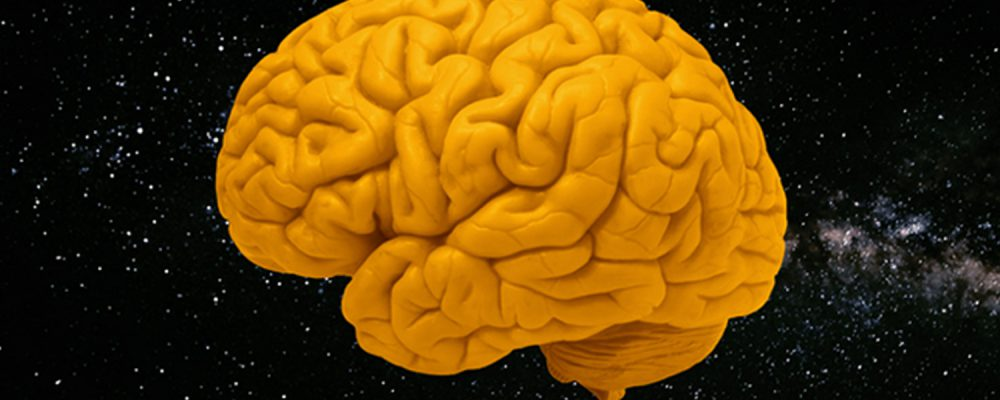 an orange colored brain set on a background of stars and outer space, the album cover for The Space Project's album Curriculum of the Mind.