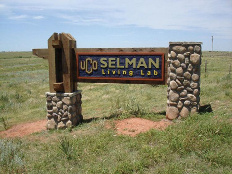 Picture of of SLL Sign