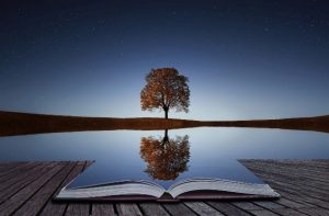 Enhanced photo of tree reflecting off a nearby pond and book